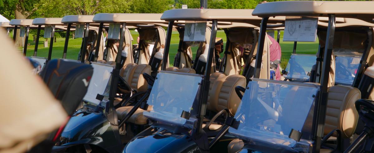 VIP golf carts